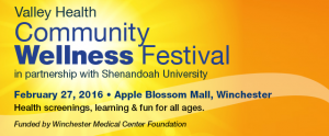 Community Wellness Festival Flyer